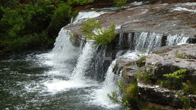 Winifred Falls, Royal National Park