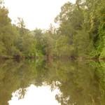 Wallacia to Bents Basin