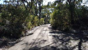 Budderoo Mountain Bike Trail