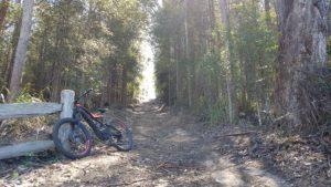 McPhails fire trail